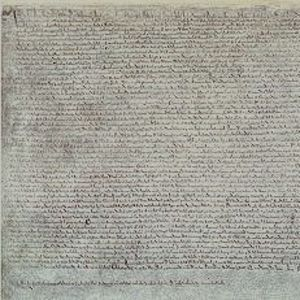 Magna carta symbolizes the origin of american ideals of equality and freedom