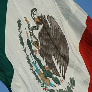 Mexican national executed in u.s.