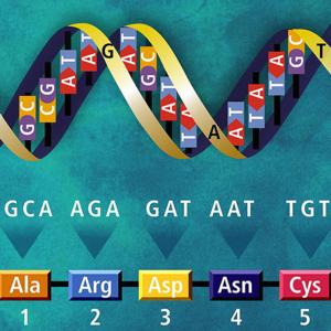 Genetics.square