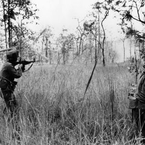 Battle of ia drang valley lz x ray 1965