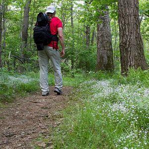 640px hiker on the appalachian trail %289599974032%29