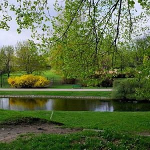 Pretty parks