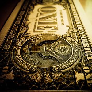 Dollar boi