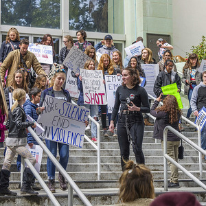 Protest parkland on the stairs