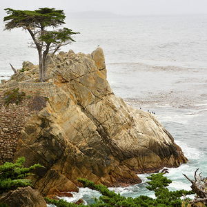 Near pebble beach
