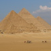 Camels kaleshes and tourism in egypt
