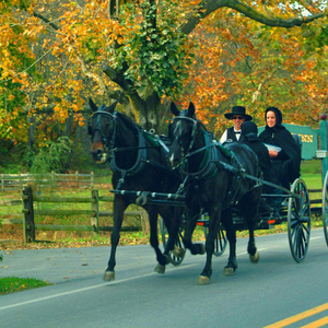Understanding the amish and technology